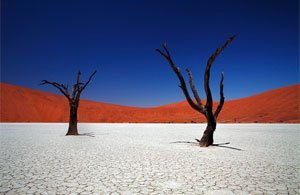 Tour Namibia - Tour Fly and Drive NAMIBIA in Libertà | Arché Travel