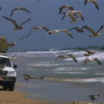 Fly and Drive Oman Tours - Oceani e Deserti
