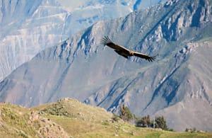 Gran Tour del Perù - Tour Perù 2016 | Arché Travel