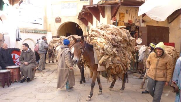 citta-imperiale-di-fez-marocco-medina