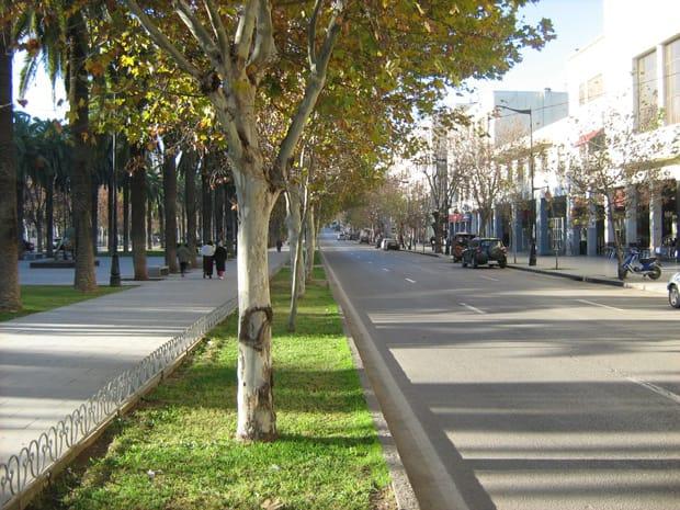fez-marocco-cosa-vedere-avenue-hassan-II