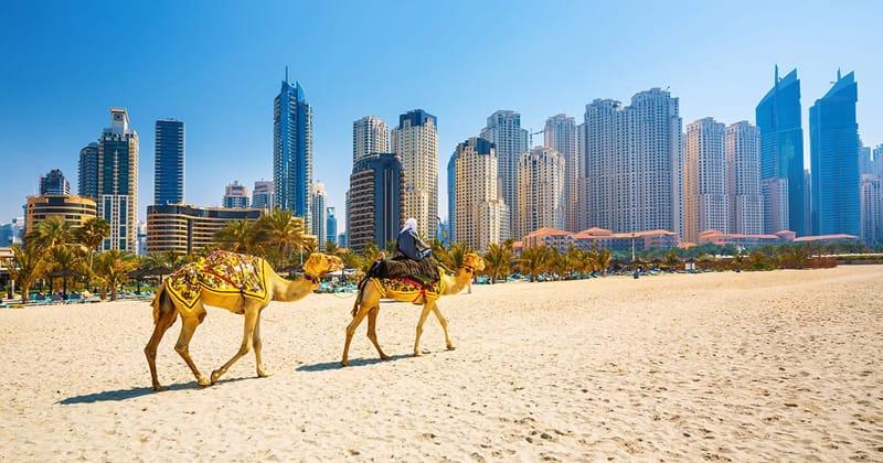 Dubai Emirati arabi cosa vede