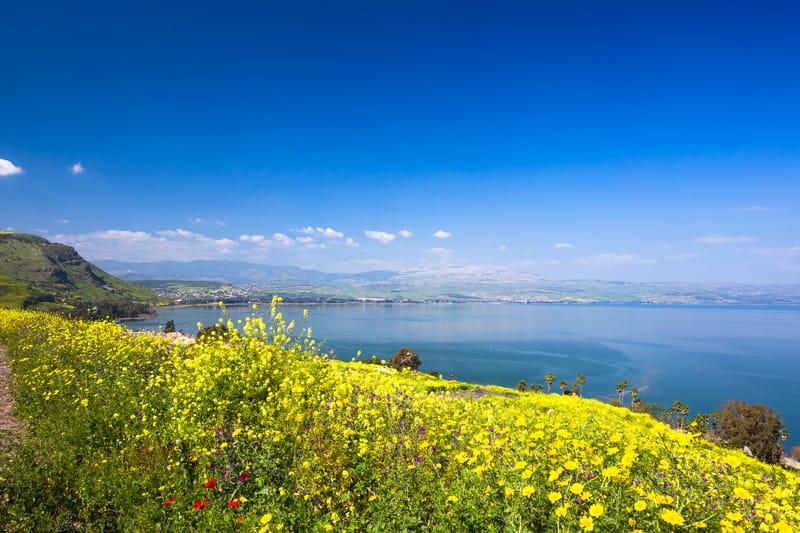 sponde lago tiberiade