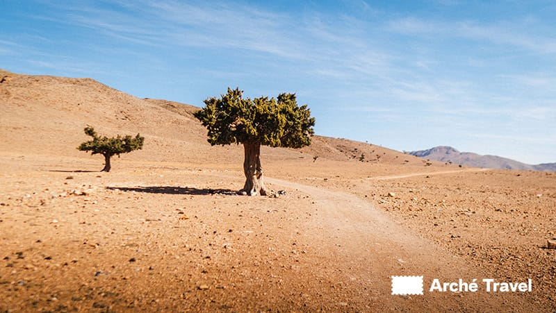 Medio Atlante - Quando andare in Marocco
