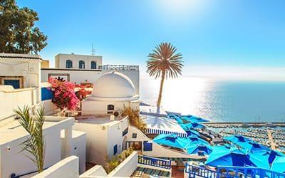 blog tunisia guida quando andare