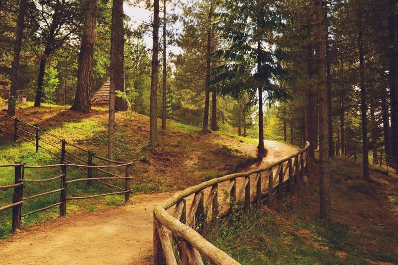 Parco Nazionale della Sila - attrazioni naturalistiche in Italia