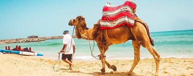 Tour Marocco e Soggiorno Mare