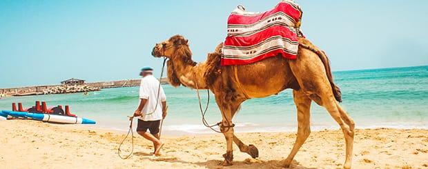 Tour Marocco e Soggiorno Mare - Città Imperiali e Mare ...