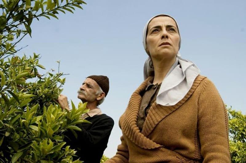 Il giardino dei limoni, Film su Israele, Film girati in Israele