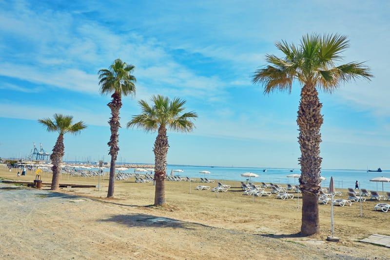 Cipro mare dove andare - Larnaca Finikoudes Beach