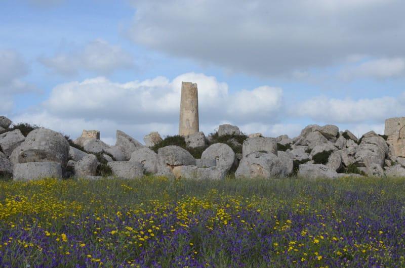 Tempio G parco archeologico selinunte