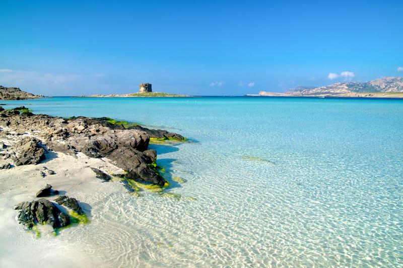 Parco dell'Asinara La Pelosa