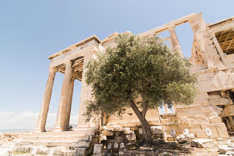 Tempio arcaico di Atena
