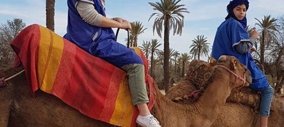 Racconto di Viaggio Marocco Torregiani