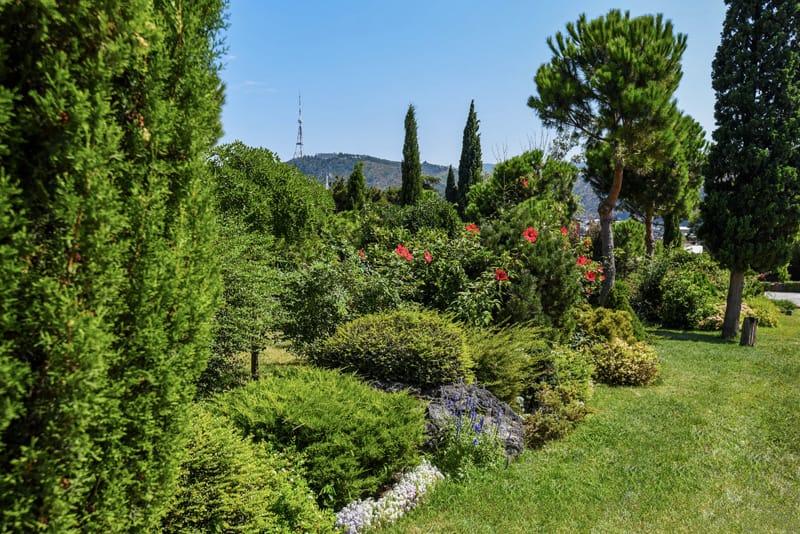 Giardino Botanico Tbilisi