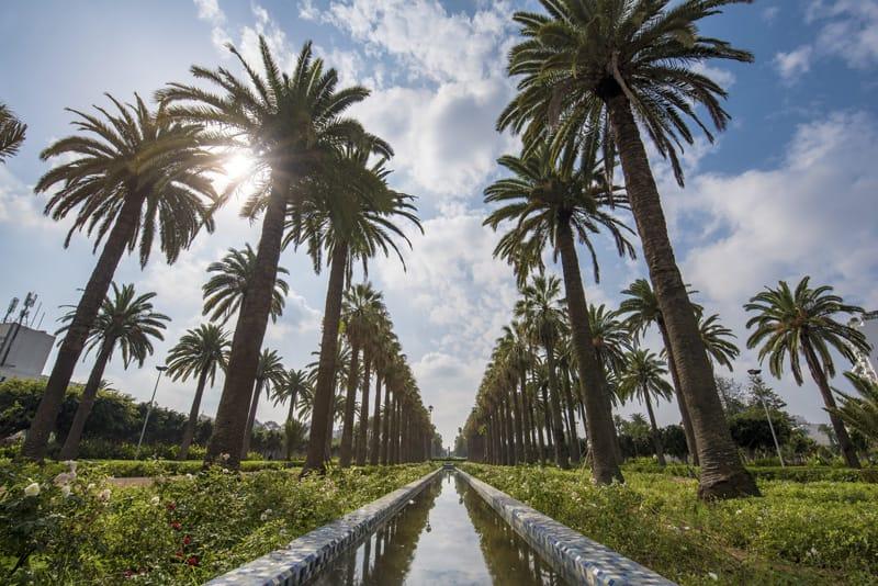 Cosa fare casablanca marocco cosa visitare parc de la ligue arab