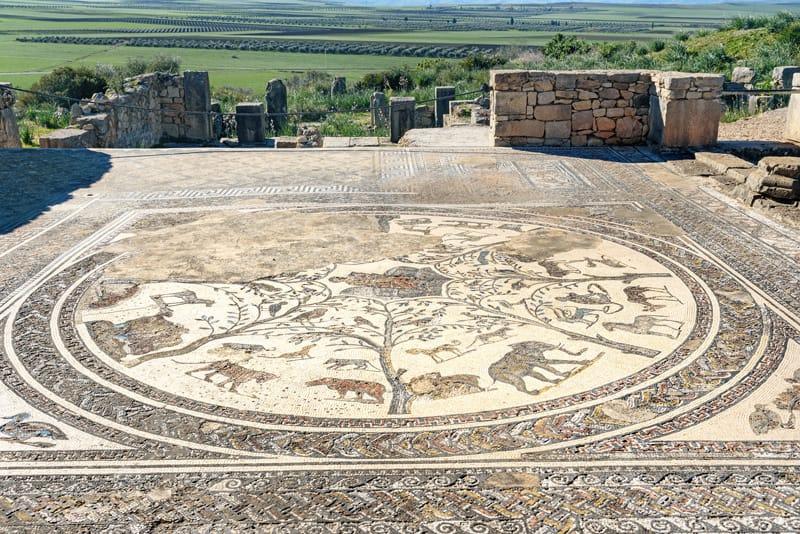 volubilis marocco mosaici orfeo