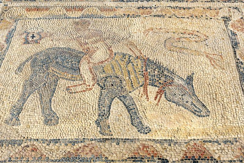 Volubilis marocco sito archeologico mosaici marocco