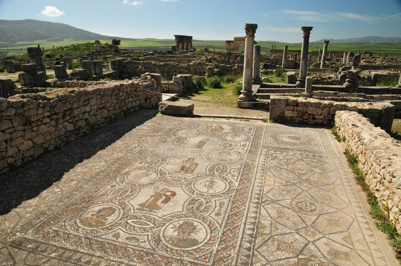 mosaico dionisio