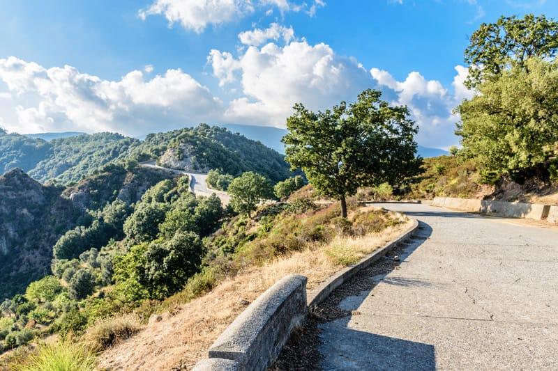 Parco Aspromonte - cammini in italia