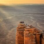 Tour Riyadh e Edge of The World - Tour Operator Arabia Saudita